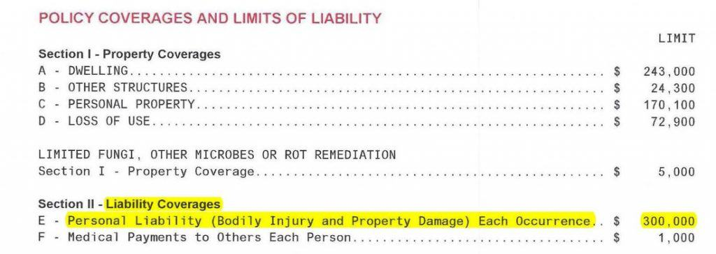 Personal Liability Insurance 300,000