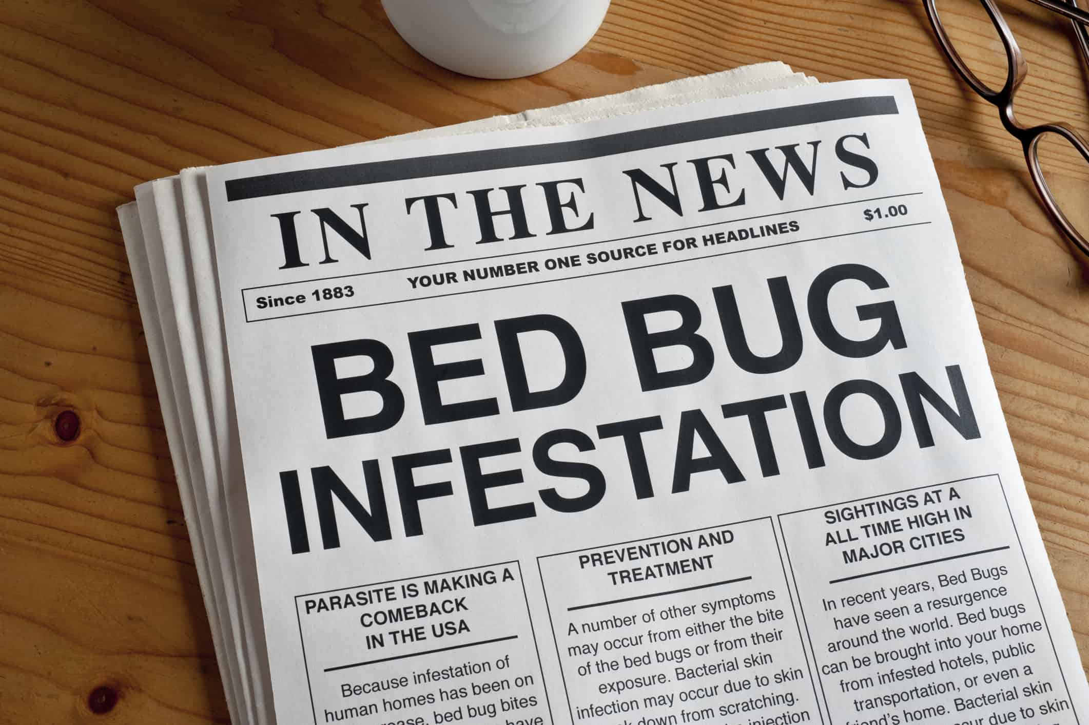 bed bug insurance news report