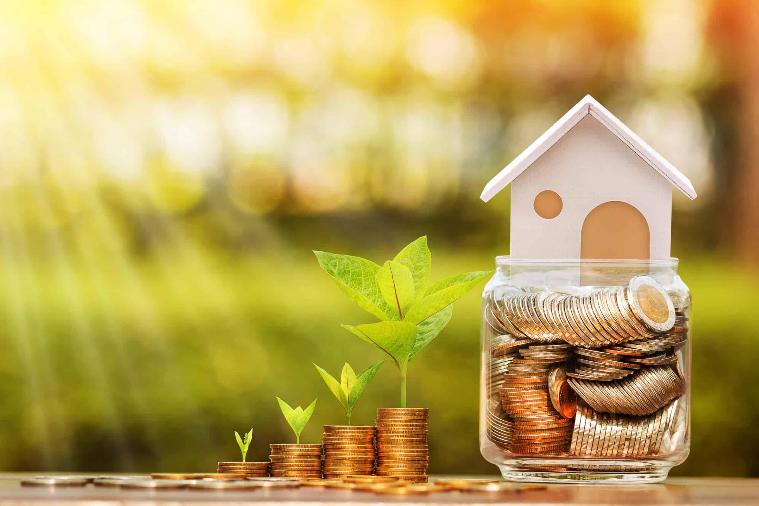 real estate investing